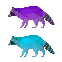 Abstract polygonal geometric triangle bright raccoon set isolate