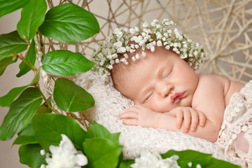 Little newborn girl 11 days, sleeps. Beautiful newborn girl and