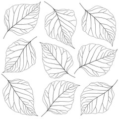 Wall Mural - contoured leaves lilac