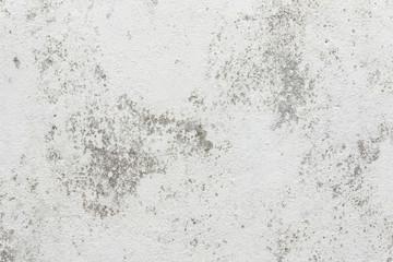 古い漆喰模様 European plastered wall