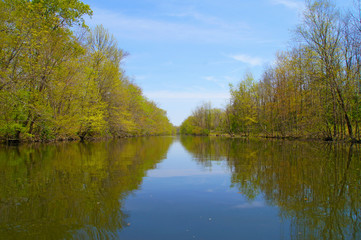 Springtime view down the river with trees covered with first spring foliage along the banks.