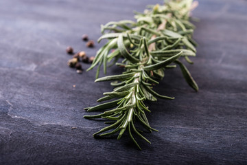 fresh rosemary bunch  on a dark wooden table