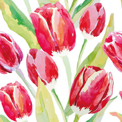 Red tulips on the white background. Watercolor vector seamless pattern with spring flowers.
