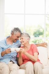 Smiling senior couple toasting with mugs