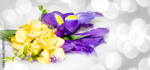 Iris and freesia flower arrangement illustration with spring yellow iris and freesia flower arrangement illustration with spring yellow purple flowers on soft mightylinksfo