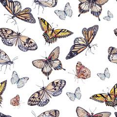 watercolor pattern with beautiful butterflies.