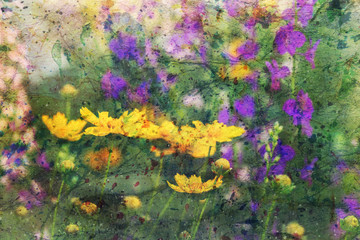 tender summer flowers and watercolor splashes