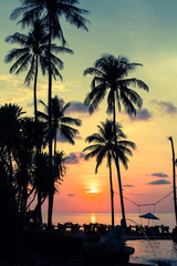 Palm trees silhouettes at tropical coast during an amazing sunset.