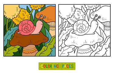 Coloring book (Snail and background)