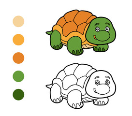 Coloring book, coloring page (turtle)