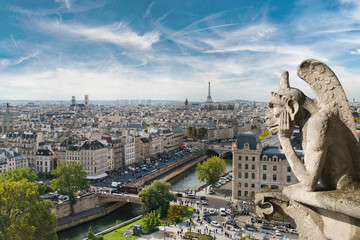 Gargoyle and wide city view from the roof of Notre Dame de Paris