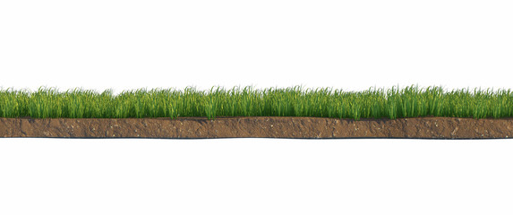 Soil and green grass layers isolated on white background