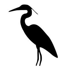 bird flamingo animal vector silhouette nature