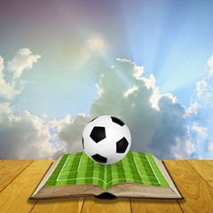 Open book with soccer filed