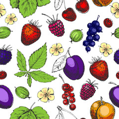 Seamless vector hand drawn pattern with fruits and berries