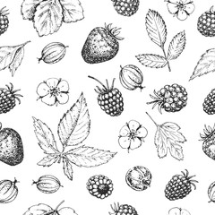 Seamless vector hand drawn pattern with berries