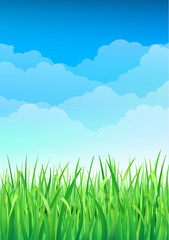 Green Grass and Blue Sky Background. Happy Summer Nature Illustration
