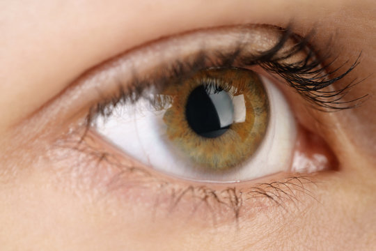 young female hazel eye with contact lens, macro photo