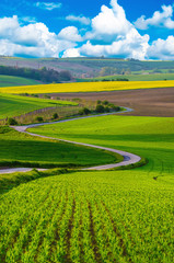 Rural landscape with green fields, road and waves, South Moravia, Czech Republic