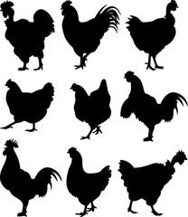 cock, chicken, hen - silhouettes
