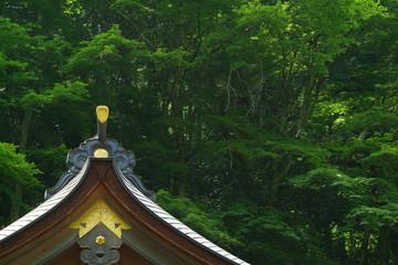 貴船神社本殿