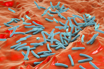 Microscopic view of bacterium Mycobacterium tuberculosis inside human body, model of bacteria, realistic illustration of microbes, microorganisms, bacterium which causes tuberculosis