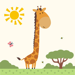 funny giraffe, african animal, cute little giraffe on nature