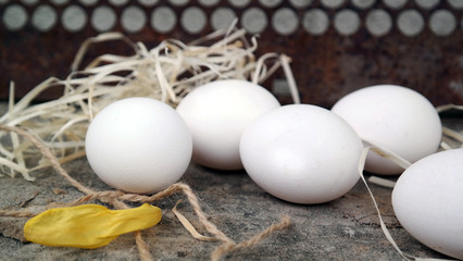 white eggs with hay and lepeskom tulip on a wooden surface