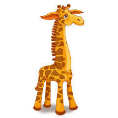 Toy giraffe on a white background.