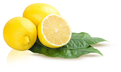Lemon fruits with leave