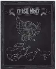 young beautiful turkey on a farm and fresh meat