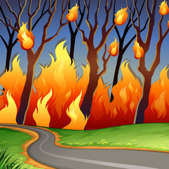 Disaster scene of forest fire