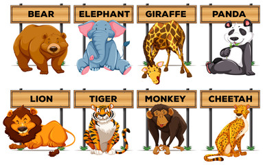 Many type of animals with wooden signs