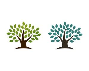 green leaf natural tree