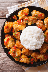 orange chicken with rice garnish close up on a plate. vertical top view