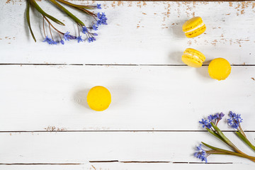 Yellow lemmon macaroons and flowers blue snowdrops on light wooden background