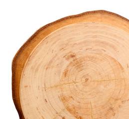 Wood round slice, isolated on white