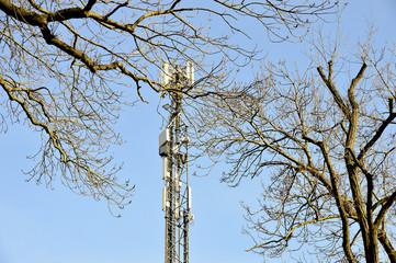 Mobilfunkmast zwischen kahlen Bäumen