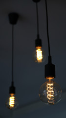 Edison light bulbs,vintage light bulbs