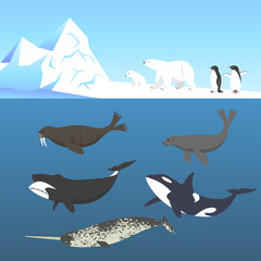 Vector set of animals living in a cold climate.