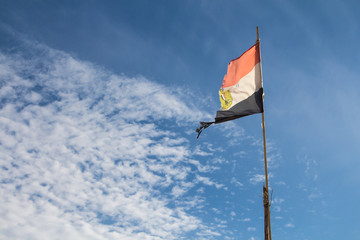 Egyptian ragged flag in the wind