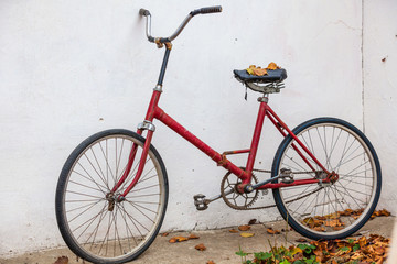 Retro Bicycle with vintage overlay