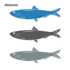Herring fish vector illustration on white background