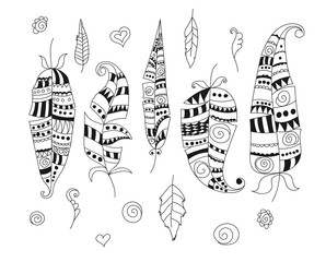 Collection of doodle feathers and decorative elements