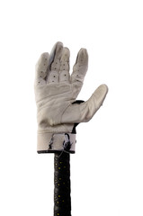 Batting glove on a bat. Clipping path included