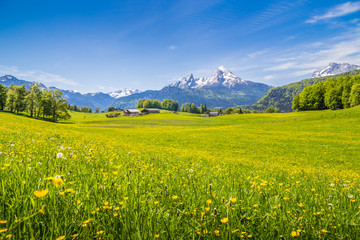 Fototapete - Idyllic landscape in the Alps with meadows and mountain tops