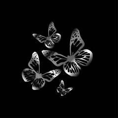 Silver colored butterflies flying on black