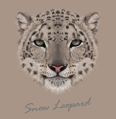 Vector Illustrative Portrait of a Snow Leopard
