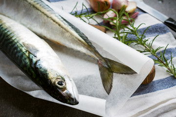 Fresh mackerel fish on the wooden board with onion and herbs
