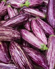 striped eggplants. Purple graffiti eggplant